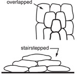 diagram of overlapping and stairstepping sandbags